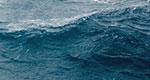 ocean_thumb_heobi.jpg