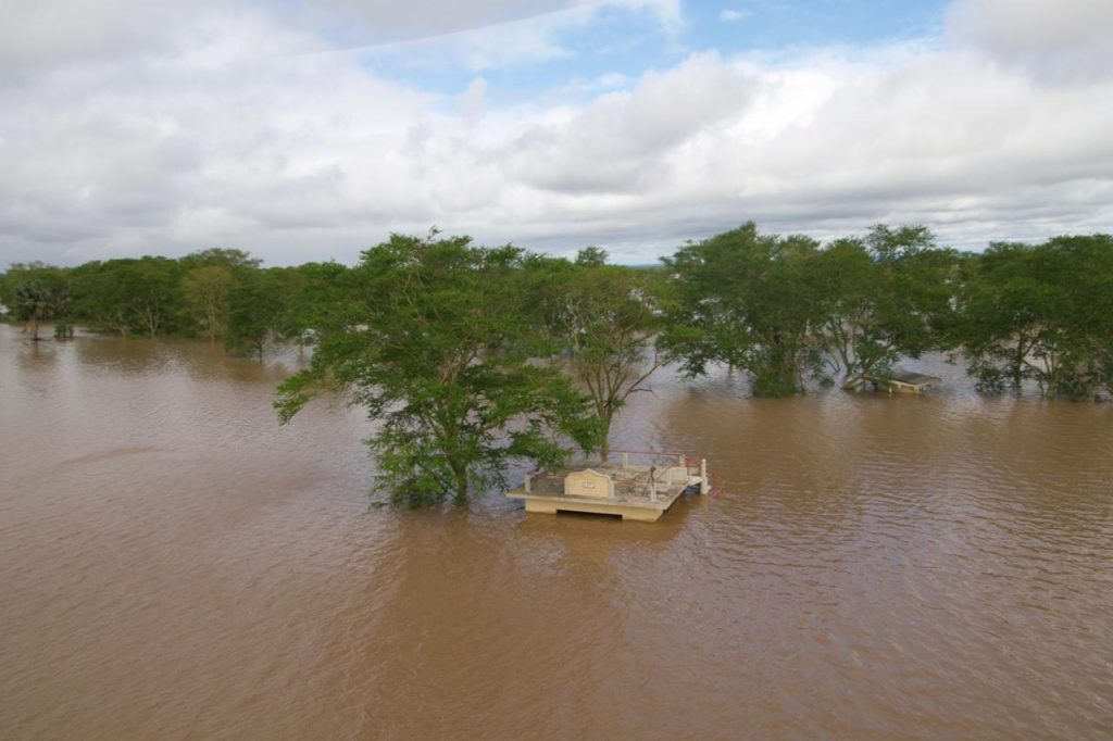 Ecological Impacts of Extreme Weather Events: Effects of ...