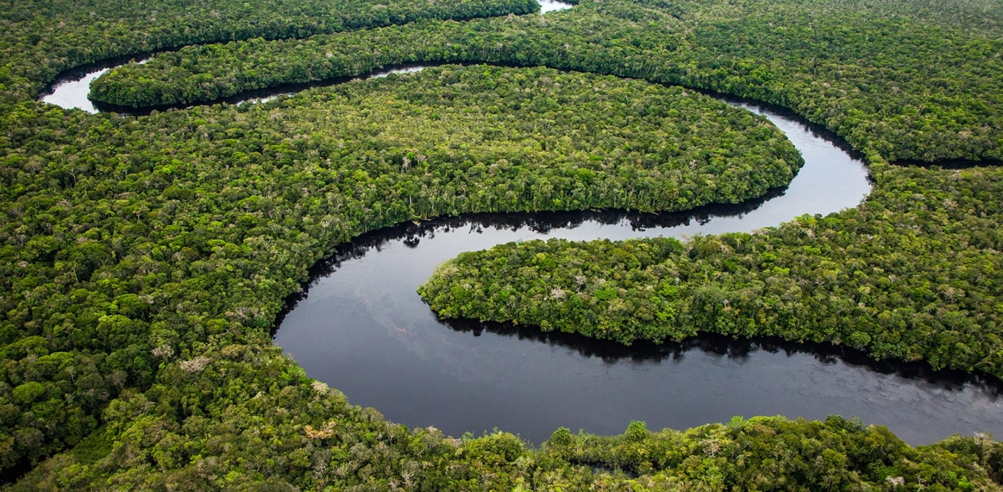 Aerial photo of Amazon River meandering through a forest.