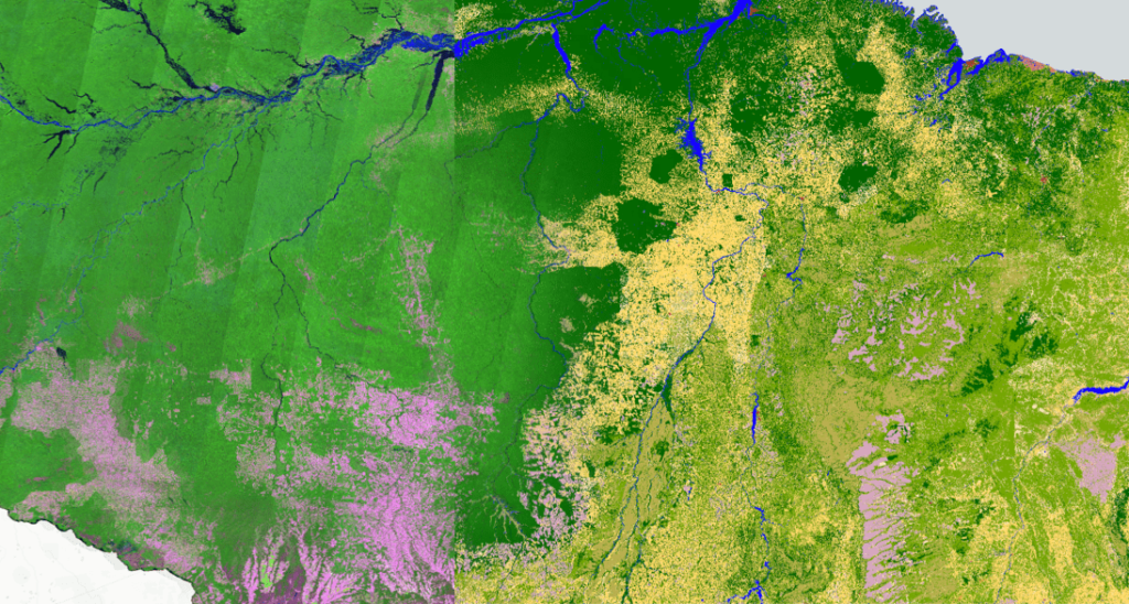 Visualization of Amazon river basin.